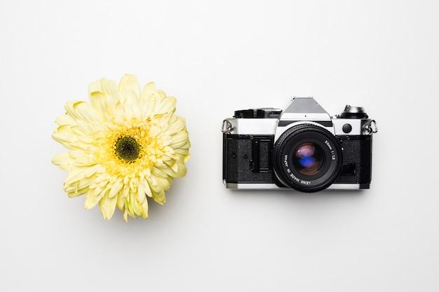 Lay plat de la caméra à côté de la fleur Photo gratuit