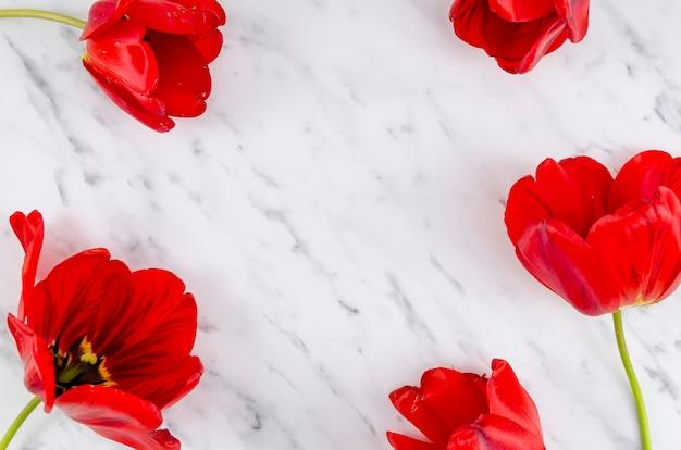 Lay Plat De Fleurs Rouges Photo gratuit