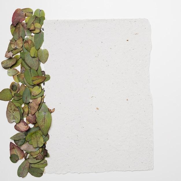 Lay plat de gabarit avec le concept de nature Photo gratuit