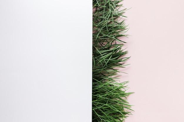 Lay Plat D'herbe Avec Fond Photo gratuit