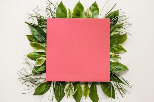 Lay plat de papier carré sur les feuilles Photo gratuit