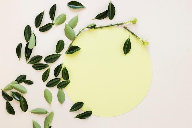 Lay plat de papier rond sur les feuilles Photo gratuit