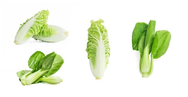 Légume choy bok isolé sur le fond blanc. Photo gratuit