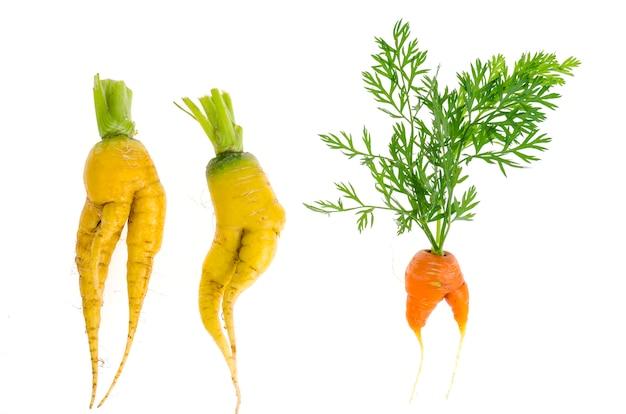 Légumes en forme, nourriture Photo Premium