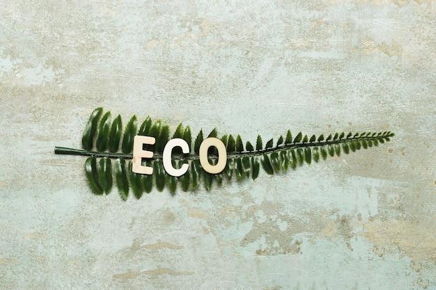 Lettrage écologique sur fausse feuille verte Photo gratuit