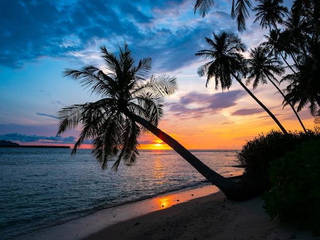 Lever Du Soleil Ciel Dramatique Sur La Mer, Plage Du Désert Tropical, Indonésie îles Banyak Sumatra Photo Premium