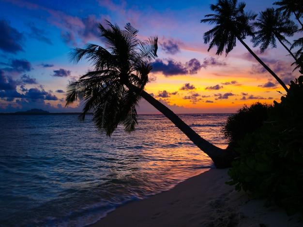 Lever Du Soleil Sur La Mer, Plage De Désert Tropical Photo Premium