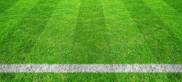 Ligne de football dans l'herbe verte du terrain de football. modèle de terrain de pelouse verte pour le fond du sport. Photo Premium