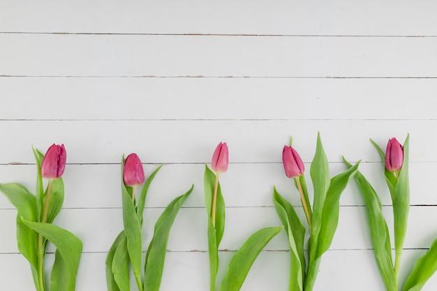 Ligne de tulipes vue de dessus sur fond en bois Photo gratuit