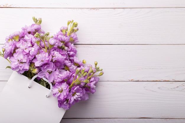 Lilas matthiola fleurs Photo Premium