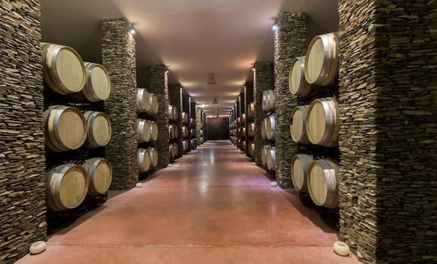 Longue cave avec des tonneaux de vin Photo Premium