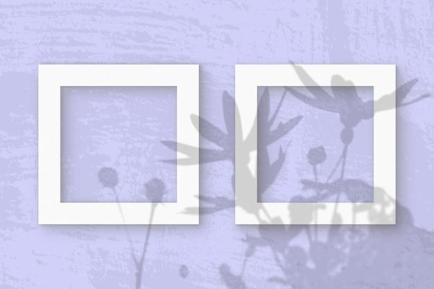 La Lumière Naturelle Projette Les Ombres D'une Fleur De Topinambour Sur 2 Cadres Carrés De Papier Texturé Blanc Photo Premium