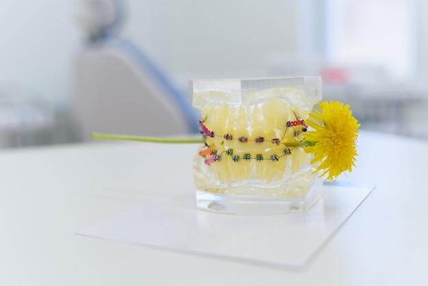 Mâchoires artificielles à bretelles qui piquent un pissenlit Photo Premium