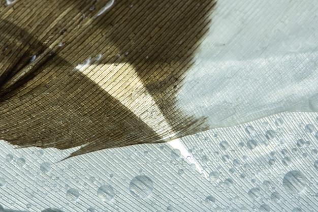 Macro fond tombe sur des plumes blanches. Photo Premium