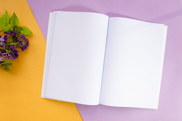 Magazine de maquette vue de dessus avec fond coloré Photo gratuit