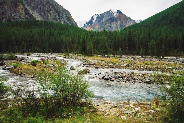 Magnifique jet d'eau rapide dans le ruisseau de montagne sauvage. Photo Premium