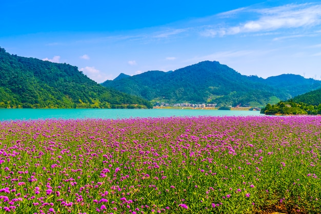 Le magnifique paysage du lac qiandao Photo Premium