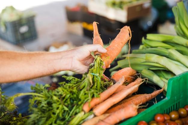 Main du client tenant une carotte fraîche lors de l'achat d'un légume Photo gratuit