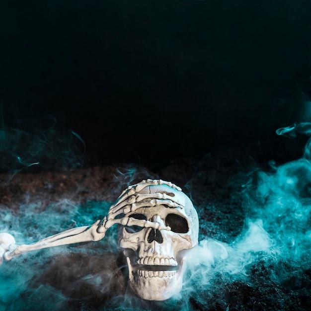 La main du squelette touche le crâne dans le brouillard bleu sur le sol Photo gratuit