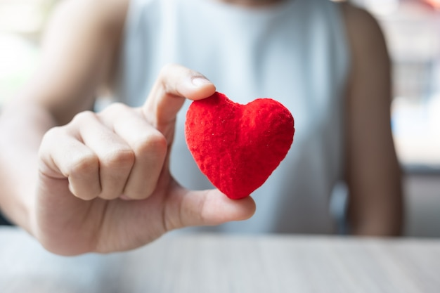 Main de femme tenant en forme de coeur rouge Photo Premium