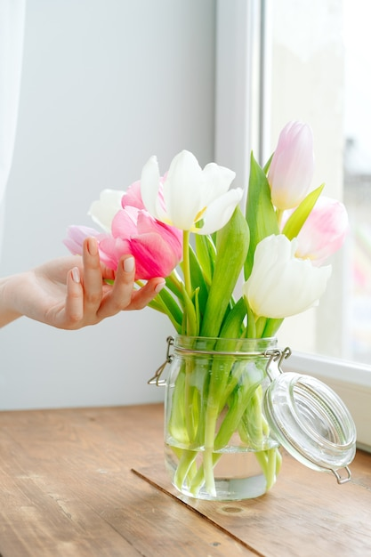Main De Femme Touchant Les Bourgeons De Tulipes Dans Un Vase Sur Le Rebord De La Fenêtre Photo Premium