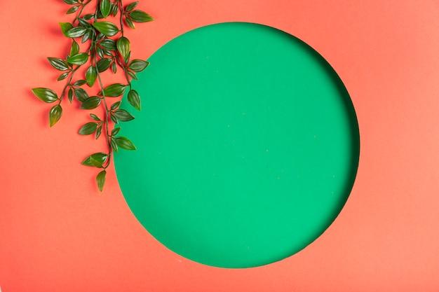 Main forme géométrique avec des feuilles à côté Photo gratuit
