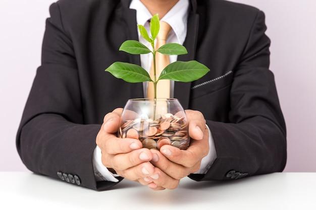 Main d'homme d'affaires mettant les pièces et la plante sur le verre Photo Premium
