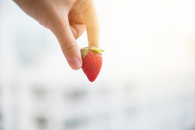 Main de l'homme tenant une fraise bio entière rouge sur fond flou Photo gratuit