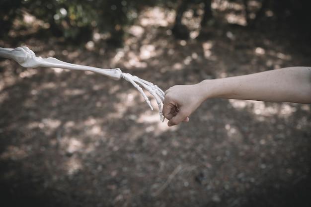La main d'os connecte le poing humain Photo gratuit