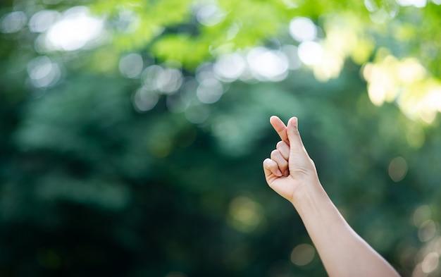 La main qui exprime l'amour pur Photo Premium