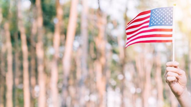 Main de récolte levant le drapeau américain Photo gratuit