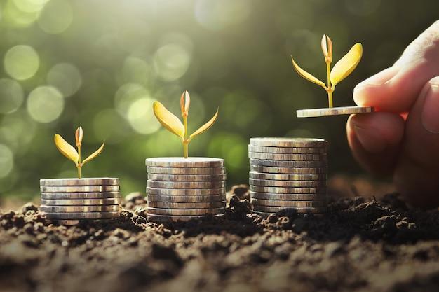 Main tenant une somme avec une jeune plante poussant sur des pièces Photo Premium