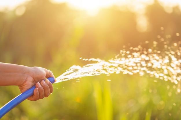 Main tenant un tuyau d'eau et arrosage à la plante dans le jardin extérieur Photo Premium