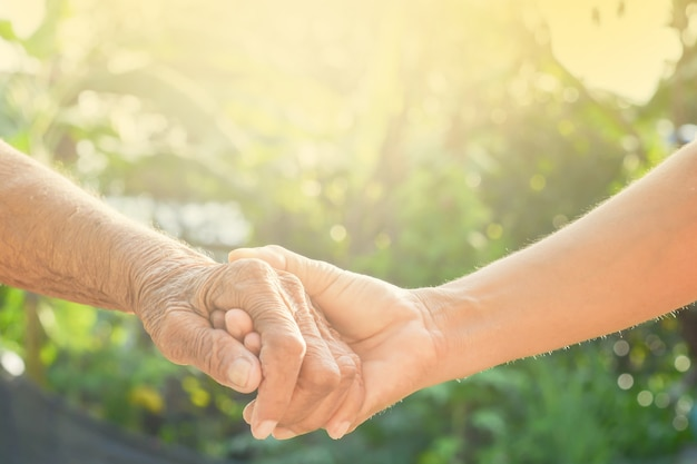 Main, vieux et main avec la lumière du matin Photo Premium