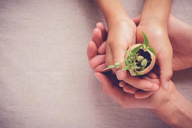 Mains adultes et enfants tenant des plants de semis dans des coquilles d'oeuf, eco jardinage, montessori educ Photo Premium