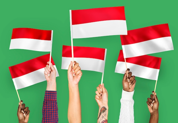 Mains agitant des drapeaux de l'indonésie Photo gratuit