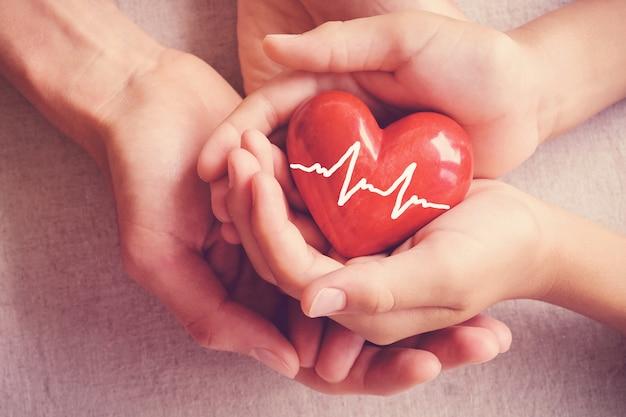 Mains, cœur rouge, soins de santé, don d'organes, concept d'assurance familiale Photo Premium