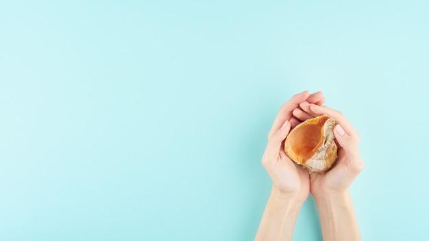 Mains féminines tenant un gros coquillage sur bleu Photo Premium