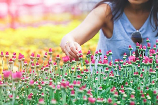 Les mains des femmes cueillent des fleurs Photo Premium