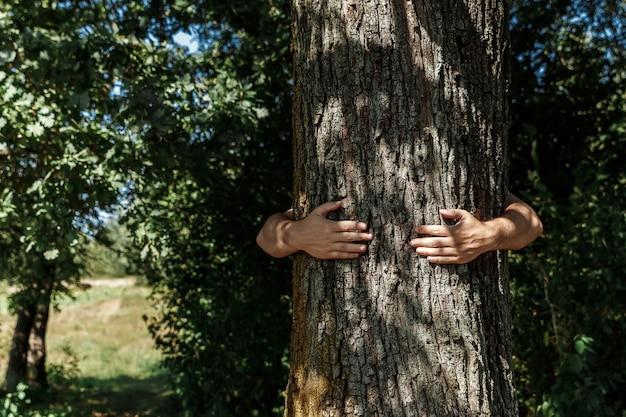 Des mains humaines étreignent, enveloppent un arbre. homme de contact et nature Photo Premium