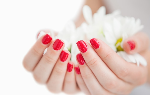 Mains manucurées tenant des fleurs Photo Premium