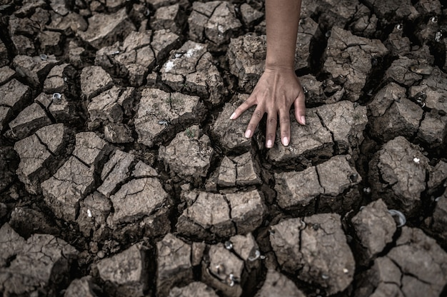Les mains sur le sol sec, le réchauffement climatique et la crise de l'eau Photo gratuit
