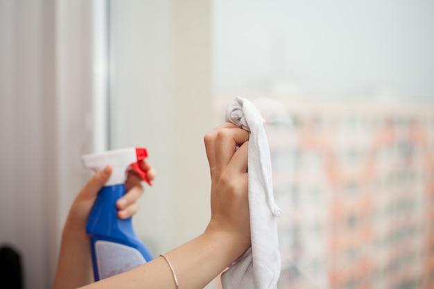 Mains Avec Spray Nettoyant La Fenêtre Photo Premium