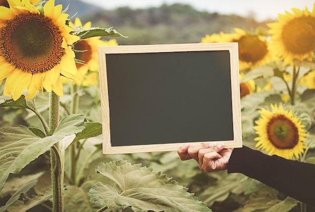 Mains tenant un tableau sur fond de tournesol Photo Premium