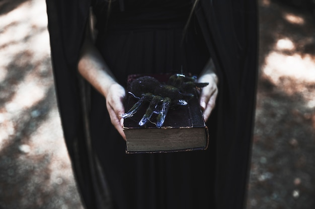 Mains, tenue femme, livre, araignée, dessus Photo gratuit