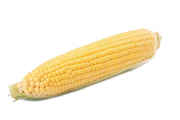 Maïs frais en épis isolé sur blanc Photo Premium
