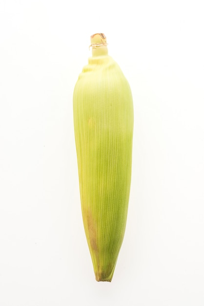 Maïs isolé Photo gratuit