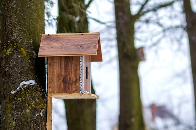 Une Maison En Bois Pour Les Oiseaux Sur L'arbre Dans La Forêt. Endroit Pour Se Nourrir Et Trouver De La Nourriture En Hiver Pour Les Oiseaux. Mangeoire à Oiseaux Dans Le Parc. Photo Premium