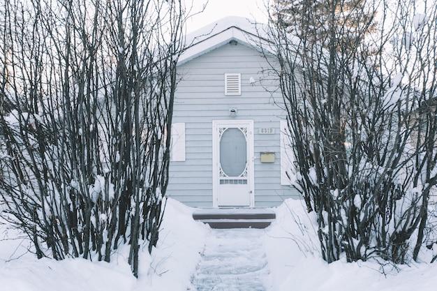 Maison avec des buissons en hiver Photo gratuit