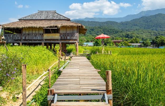Maison de campagne sur les rizières vertes et pont en bois de manière. Photo Premium